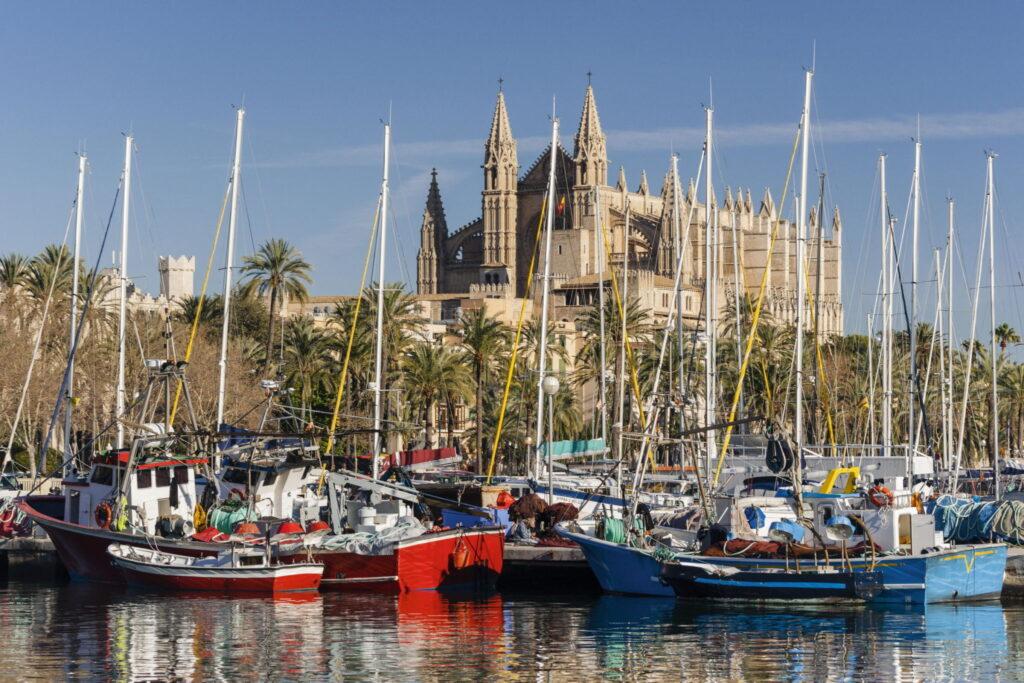 Boote im Yachthafen, dahinter die prächtige Kathedrale und darüber blauer Himmel - Palma grüßt als Sehnsuchtsort